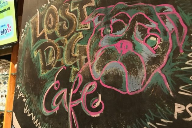 Tysons After Dark: Speciality Sandwiches, Trivia at Lost Dog